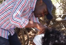 Mercury Hair Monitoring in Women of Child-Bearing Age in Migori County, Kenya in 2016